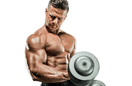 Learn How Anabolic Steroids Help in Building Endurance